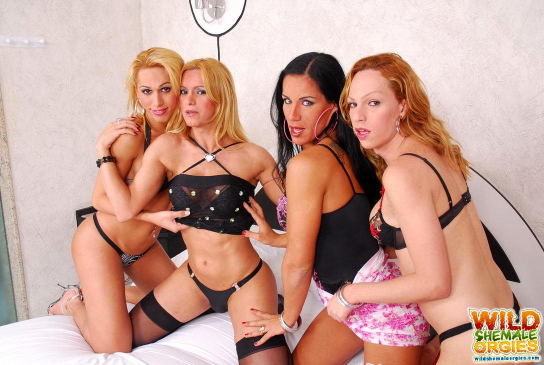 Alessandra Leite Desires Wild Transexual Orgy