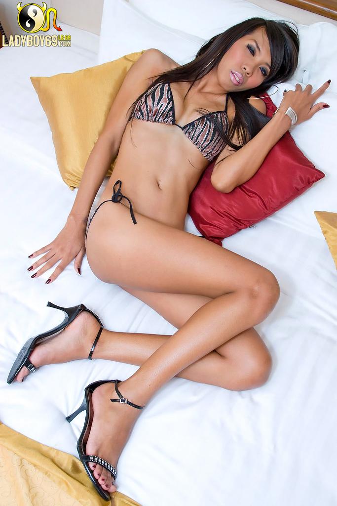 Amazing Transexual Posing Naked