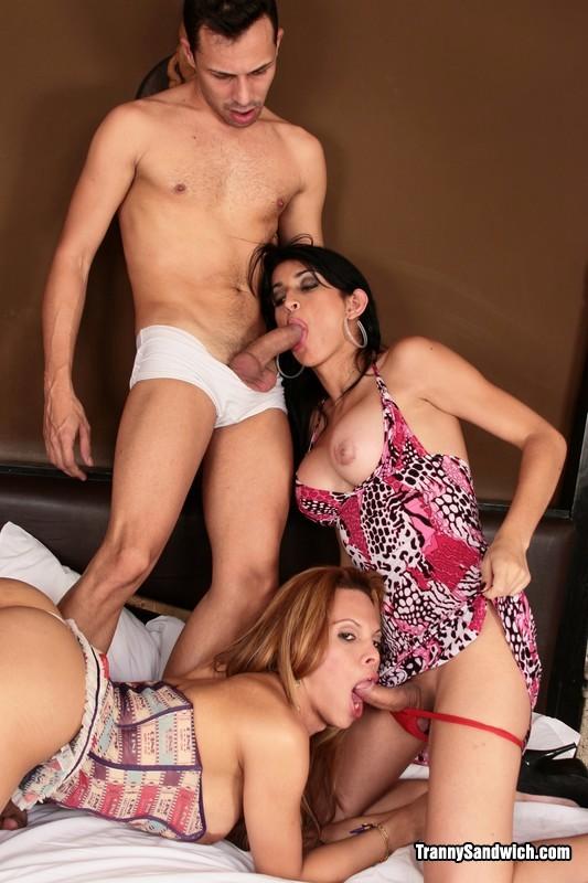 beautiful three way with slutty transexuals