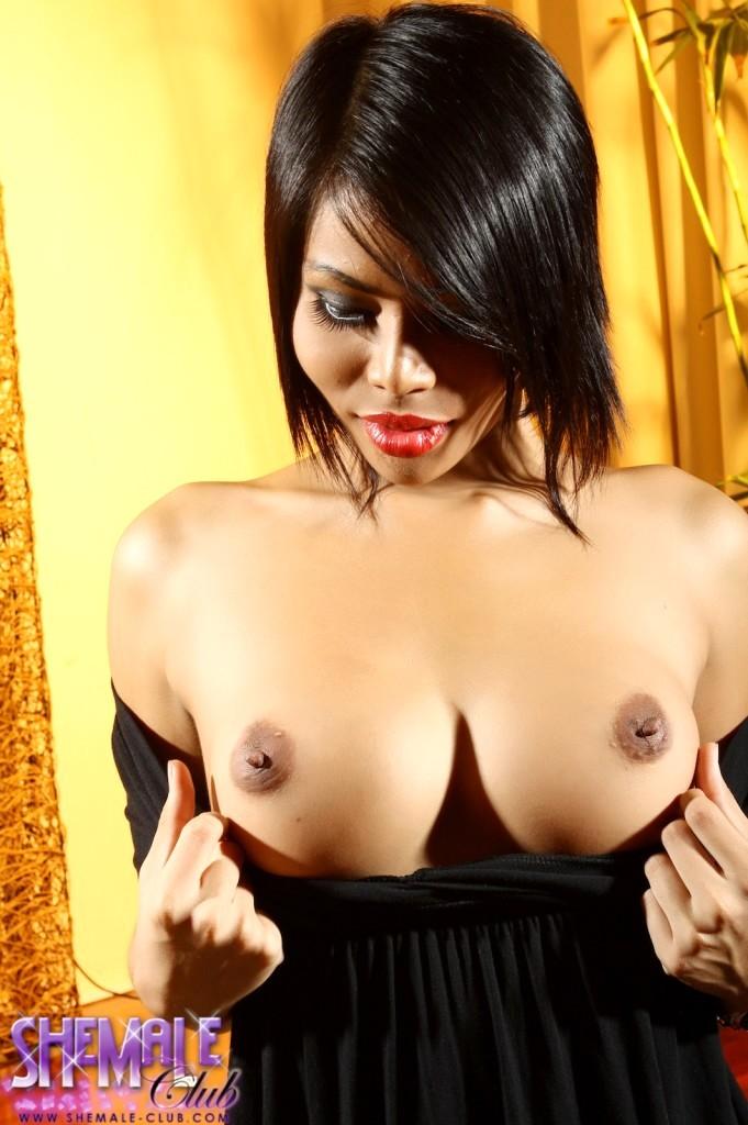 Bibi Transexual - Brunette Ts Cuttie Strips And Rub's