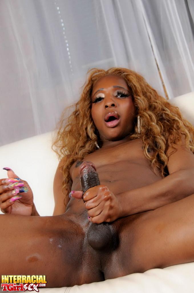 Black Beauty Ariel Poses & Stroke's