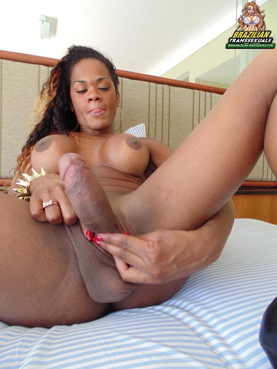 ebony shemale carol dias from brazil posing her big tool