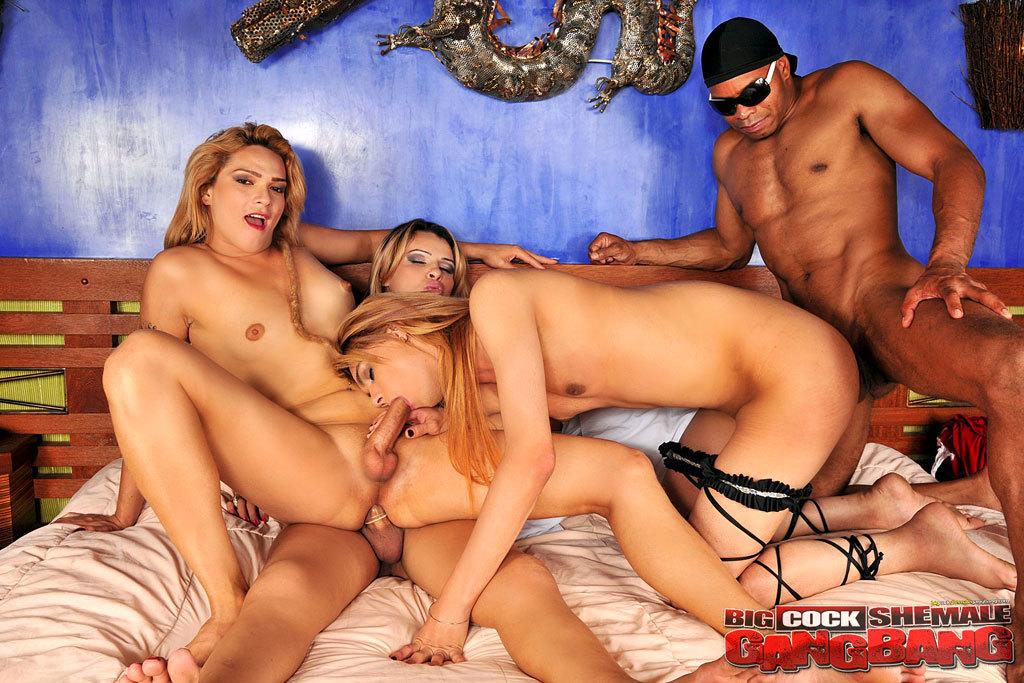 Enormous Penis Trannies Group Sex