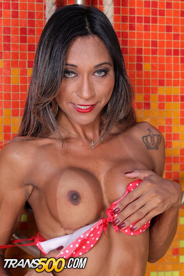 Gorgeous Bruna Santos In This Solo Tgirl Shecock Stroking Scene