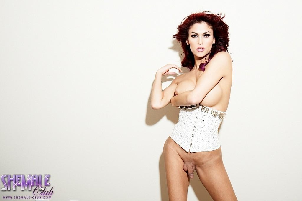 Gorgeous Huge Tit TS Domino Posing