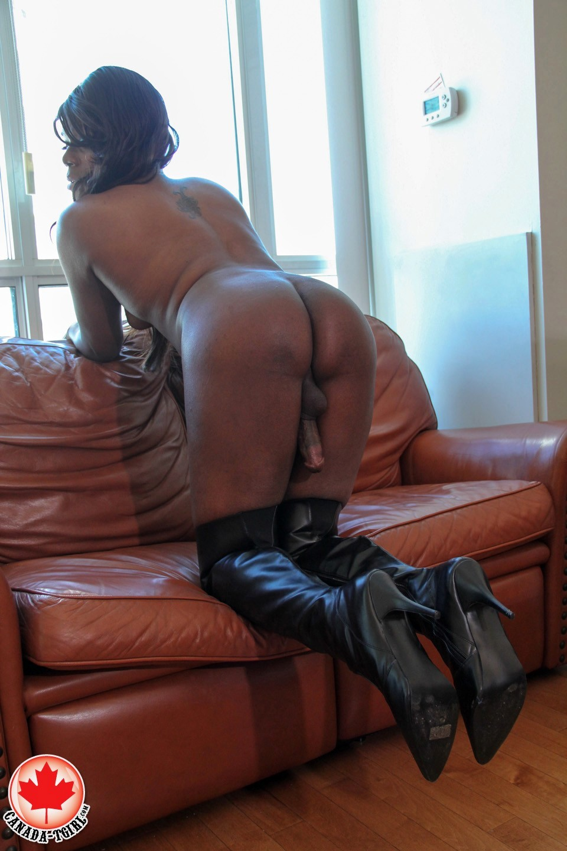 kourtney doll black canadian tgirl strocking her dick