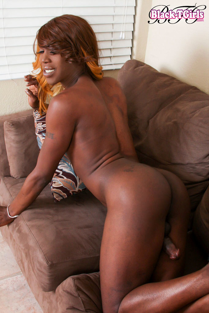 Ladyboy Ebony - Pretty Attractive Black TGirl