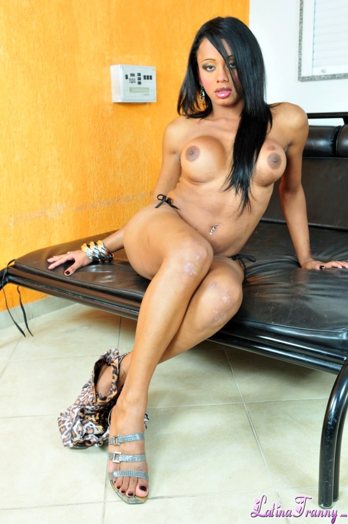 Ladyboy Veronica Havenna Stroking Her Dick