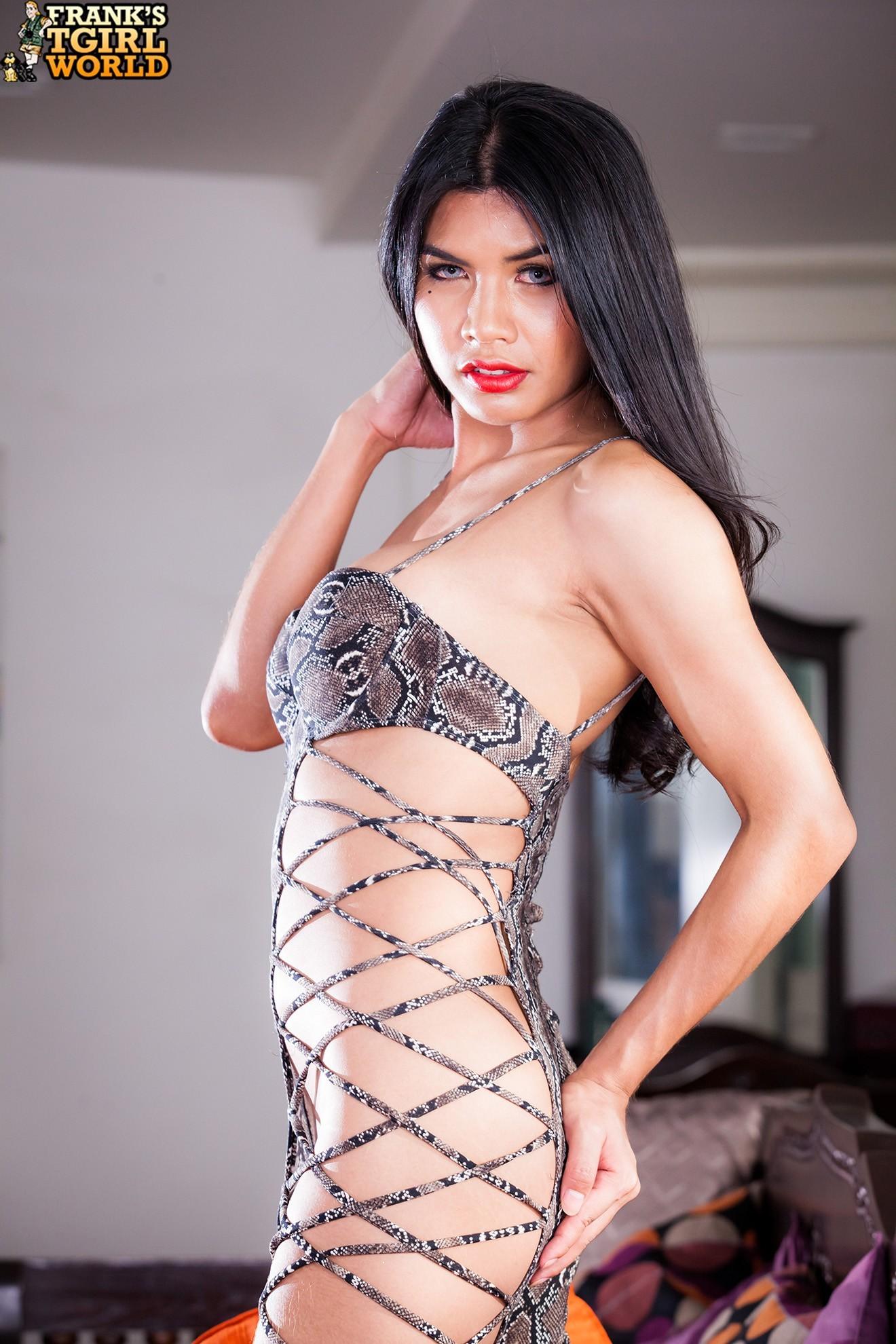 Lidia Flirtatious In Animal Printed Body Stockings