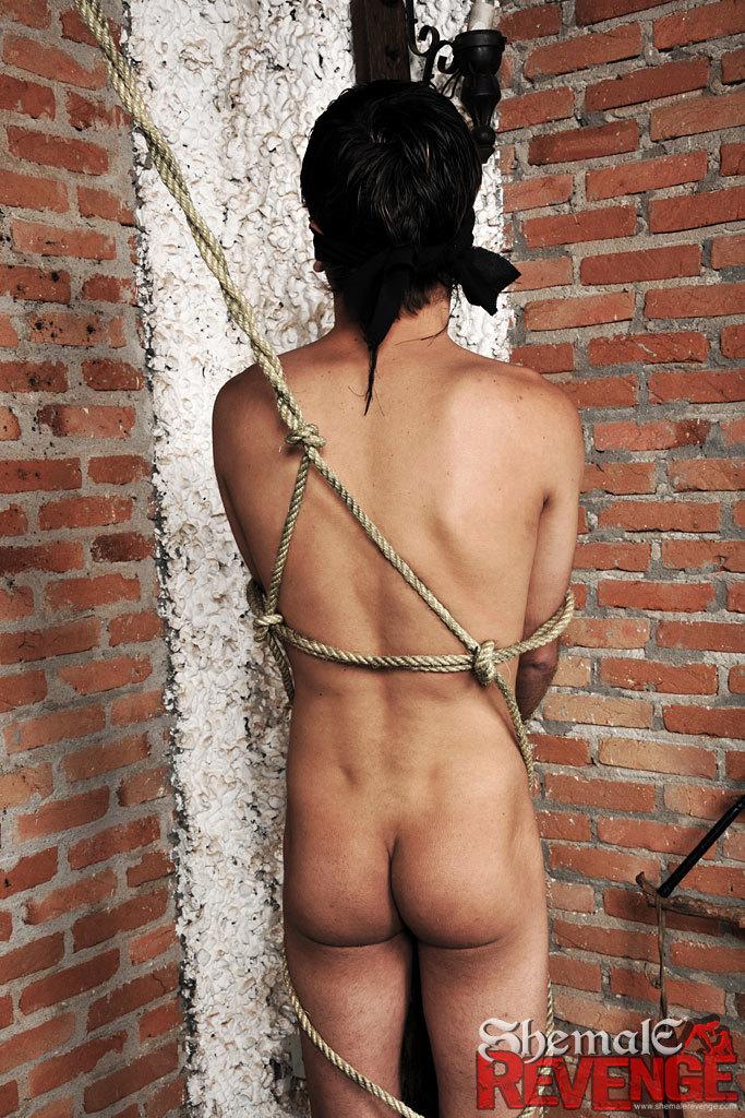 Luana Varela Seductive Dominating Tgirl