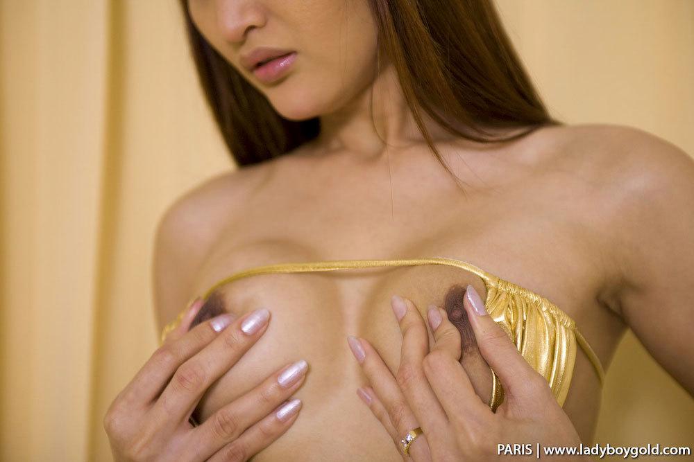 Paris TGirl Bunny In Golden Suit