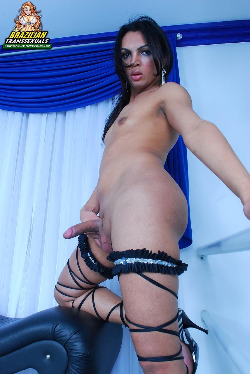 sensual transexual babe bruna albuquerque