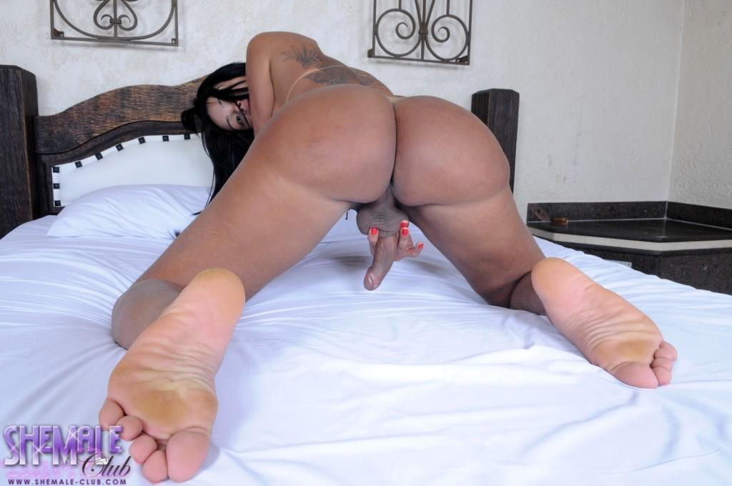 sensuous stockings