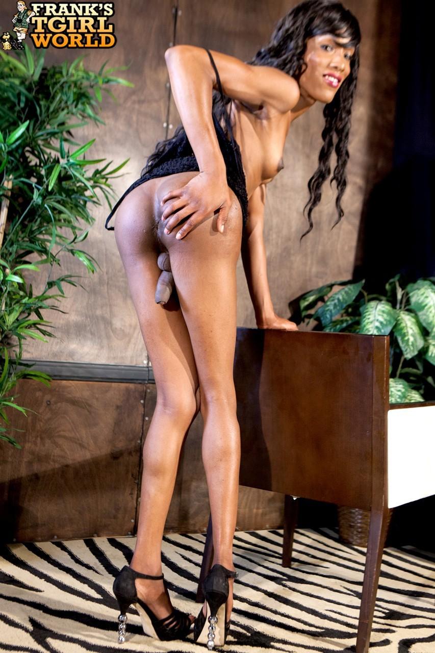 Slender Malibu Barbie Exposing Her Long Legs And Penis