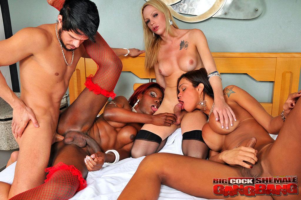 Stunning T-Girl Orgy