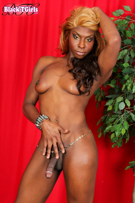 t girl pretty melodi posing in beautiful black panties